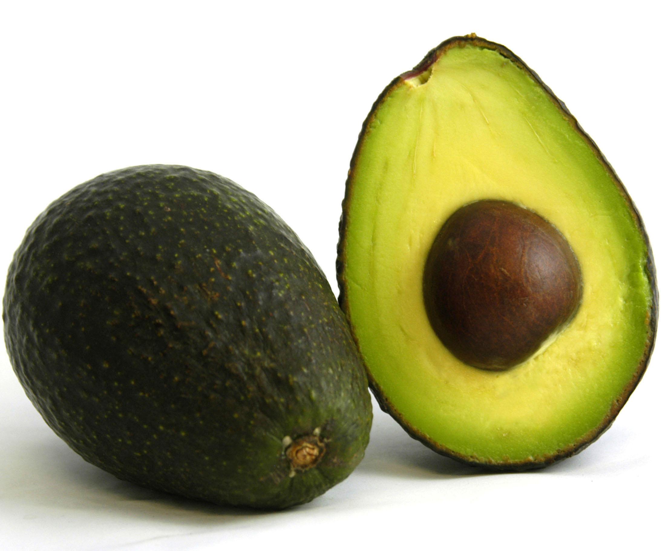 avocado fett verbrennen