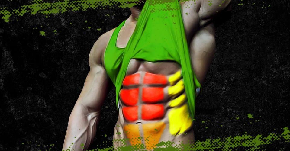 Untere Bauchmuskeln trainieren & freilegen   Zec+