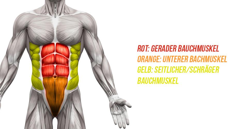 Bauchmuskel-Übungen: Tipps & Tricks | Zec+