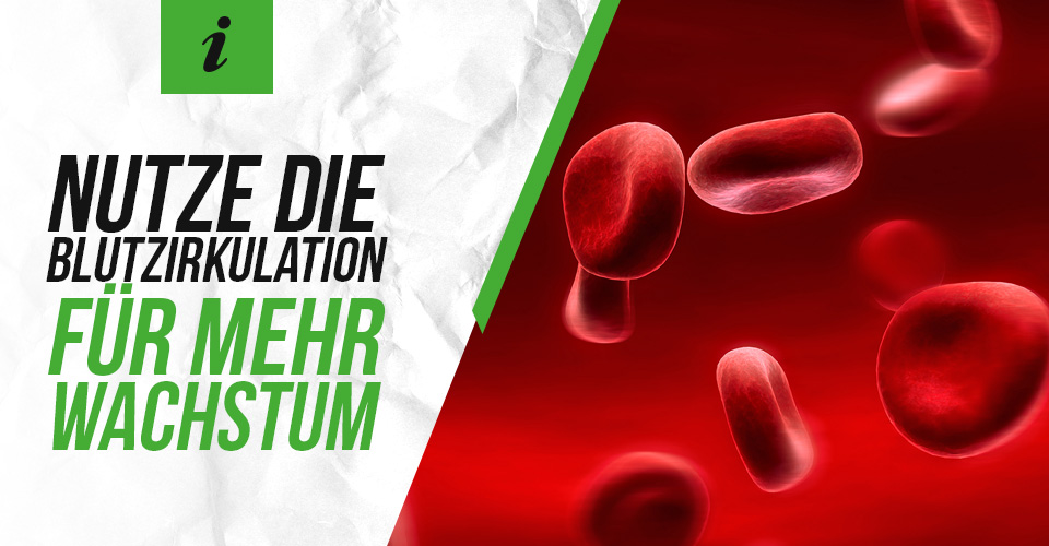 Nutze die Blutzirkulation für mehr Wachstum